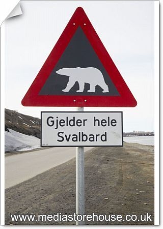 fine art print of cos 3965 polar bear road sign longyearbyen svalbard spitsbergen norway bill. Black Bedroom Furniture Sets. Home Design Ideas